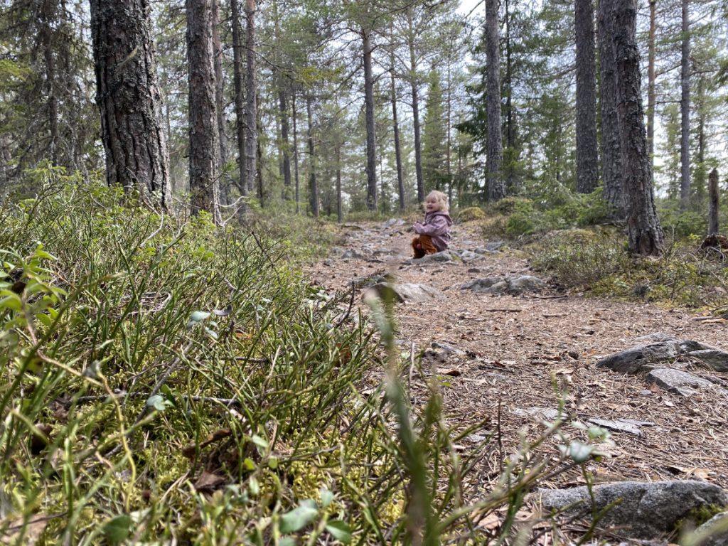 Den Wald mit Kindern erkunden, spielend lernen im Wald, Spielideen für den Spaziergang durch den Wald