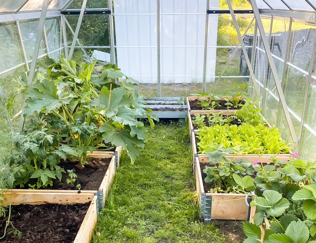 Ideen für Gartenprojekte mit Kindern