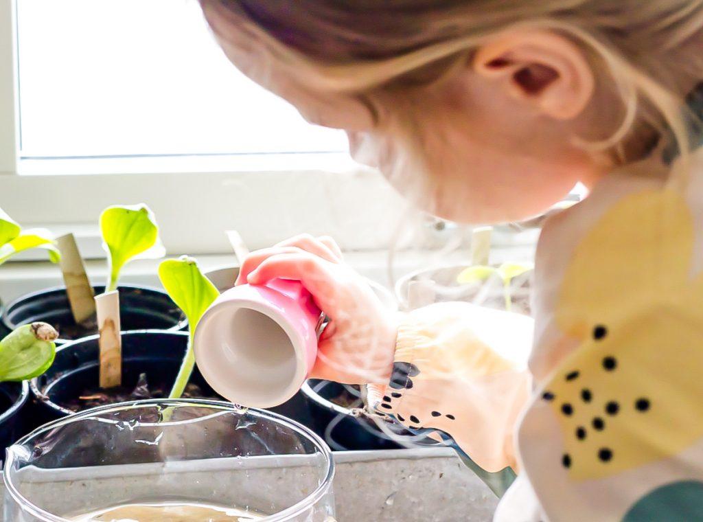 Gärtnern mit Kindern Tipps